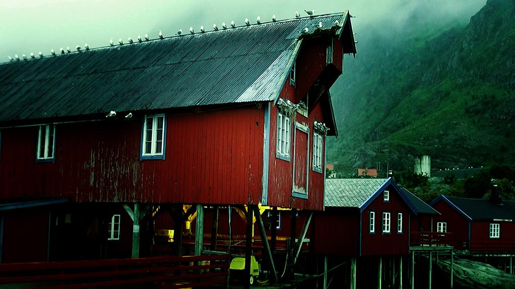 Лофотены. Свольвер. Деревня Å. Рыбный стол Норвегии
