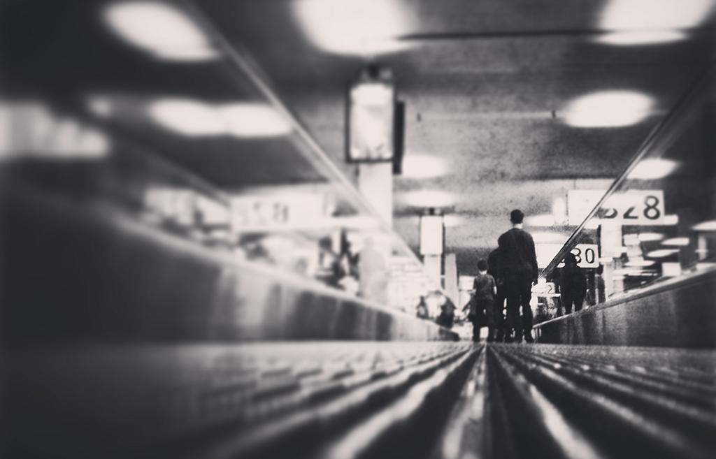 Пассажир. Москва-Амстердам-Майами-Сан-Хосе