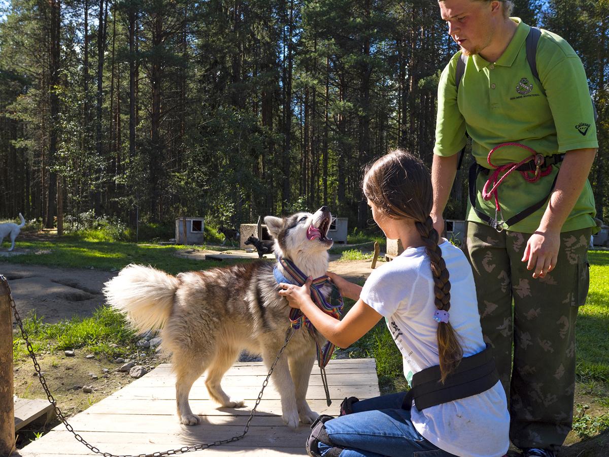 Северная Карелия Калевала хаски