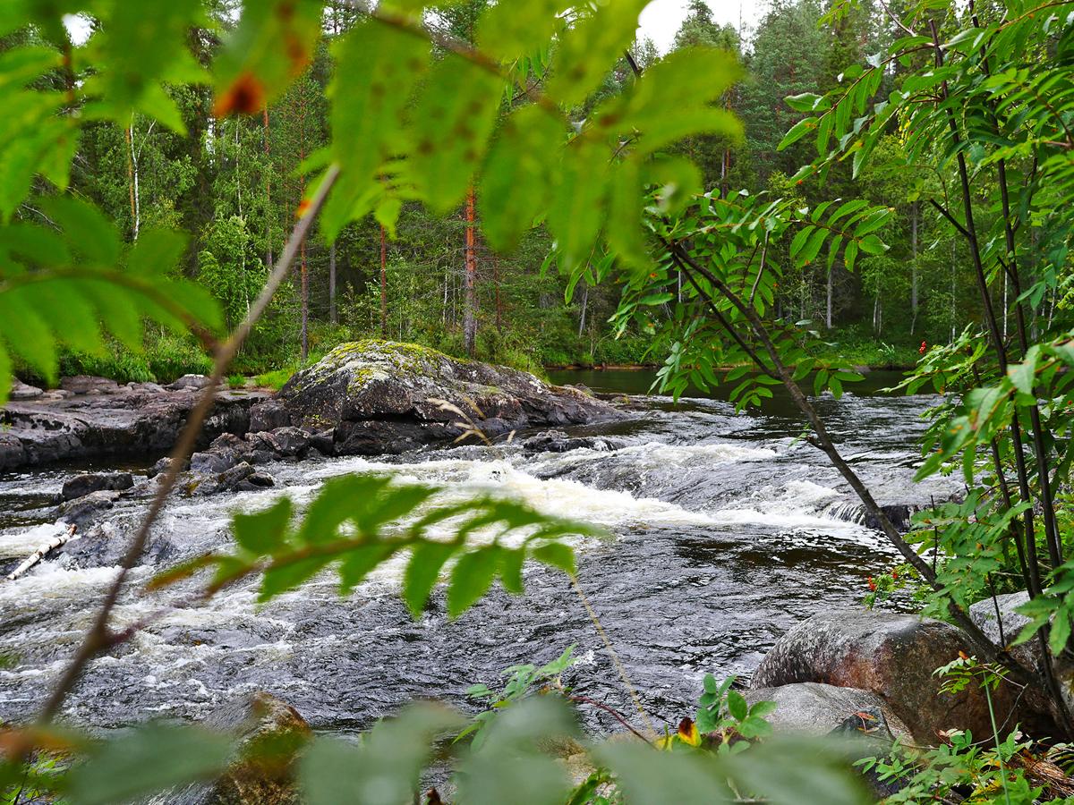 Водопад Куми — синдром Калевалы 012