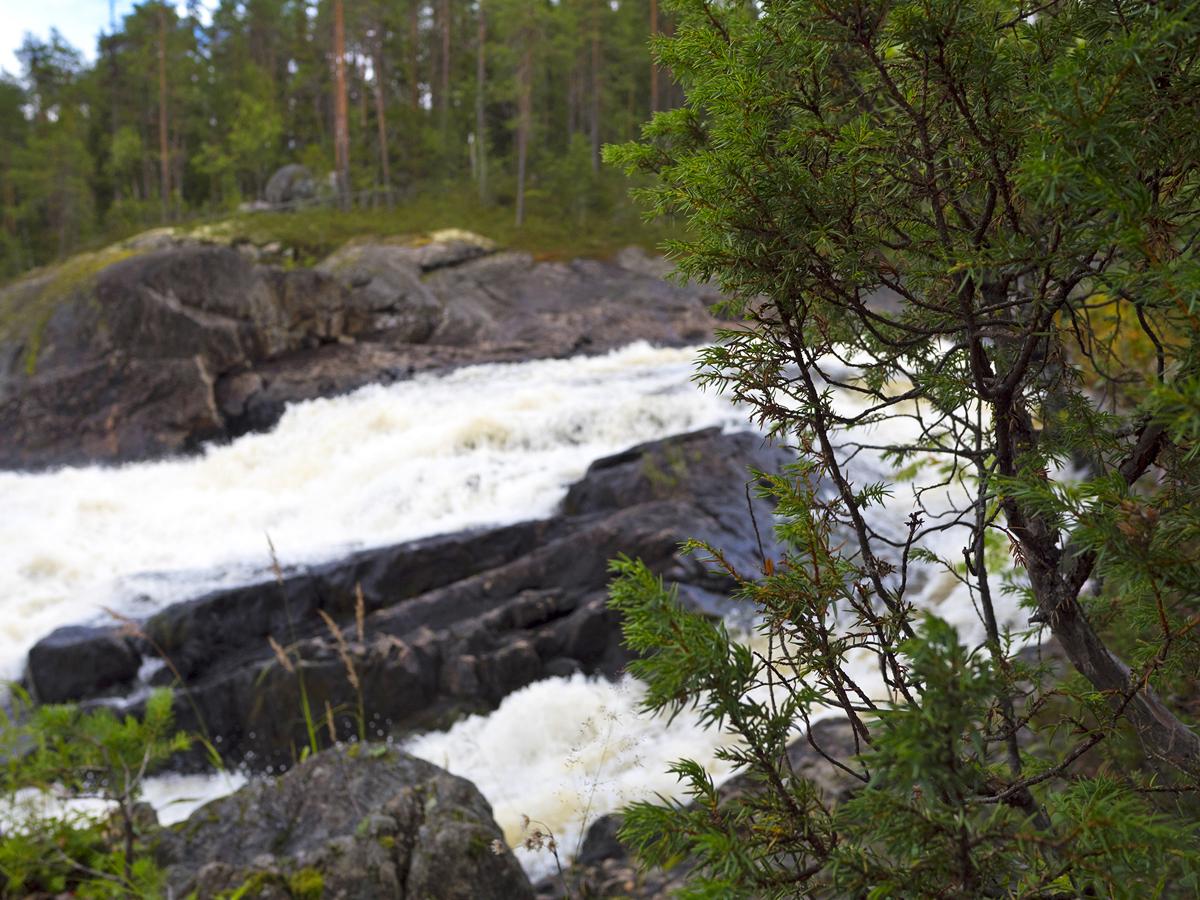Водопад Куми — синдром Калевалы 017