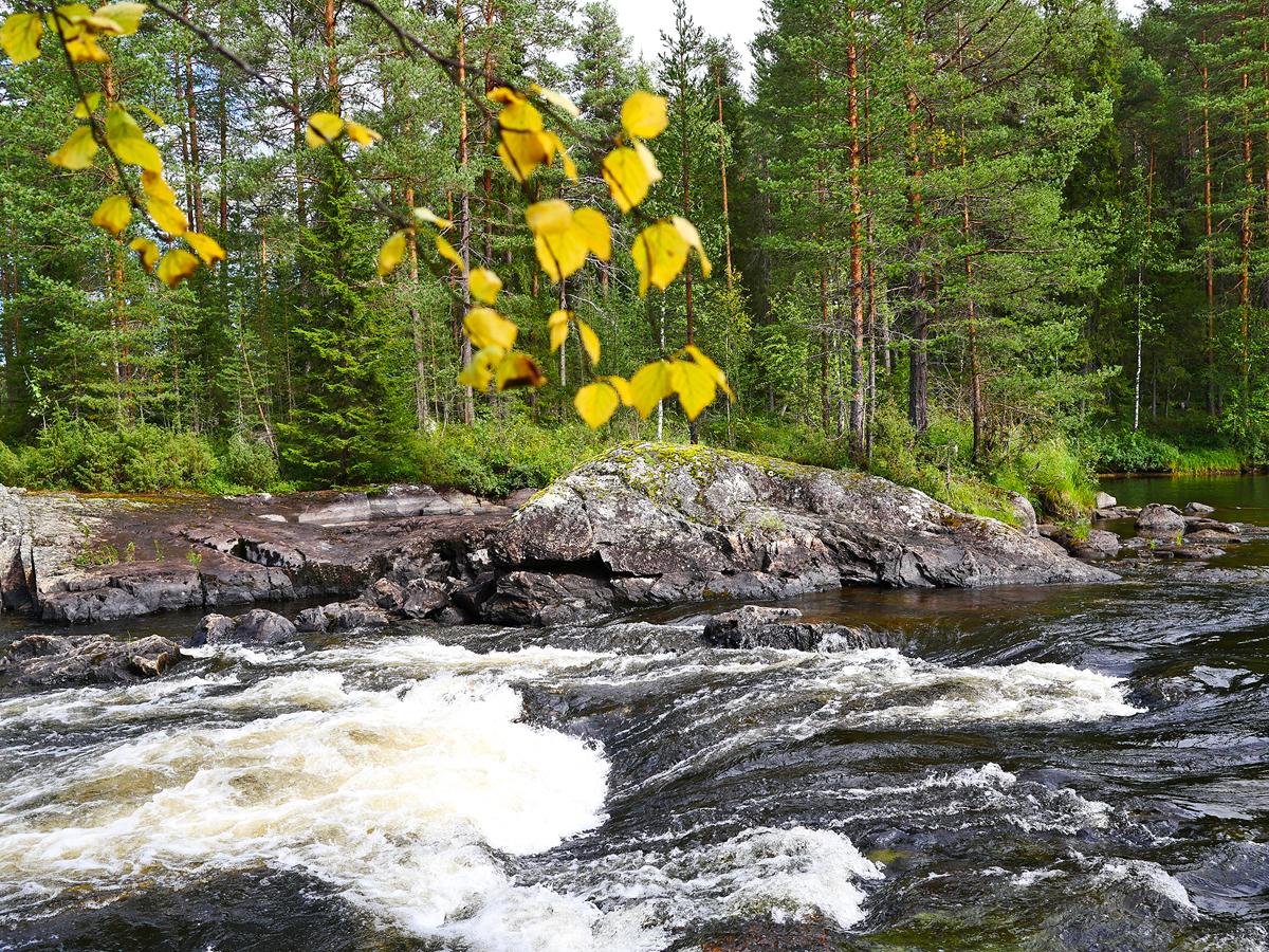 Водопад Куми — синдром Калевалы 05