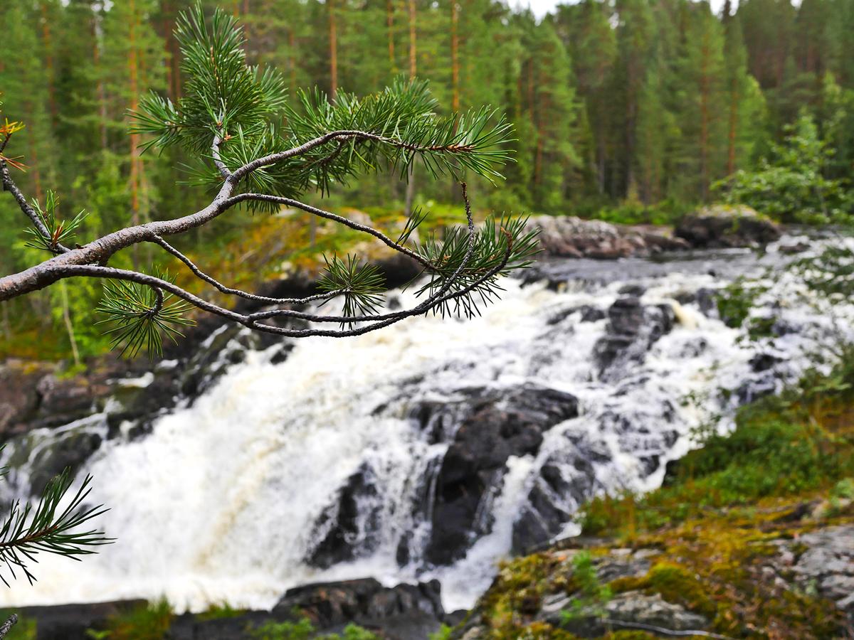 Водопад Куми — синдром Калевалы