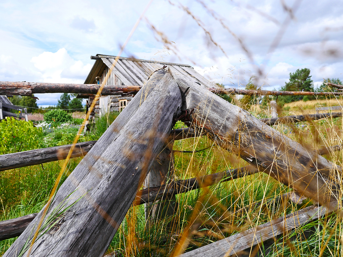 Экскурсия в деревню Хайколя — этнографическая экскурсия летом 010