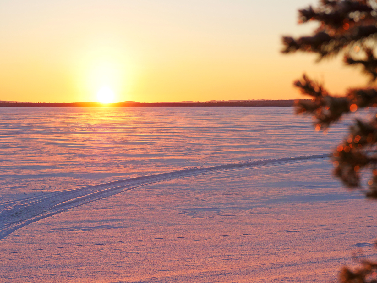 Снегоходы в Северной Карелии 010