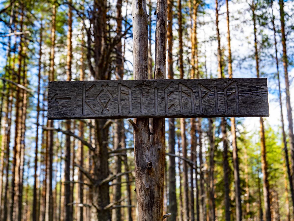 Venehjärvi место, где хочется умереть или вновь родиться 010
