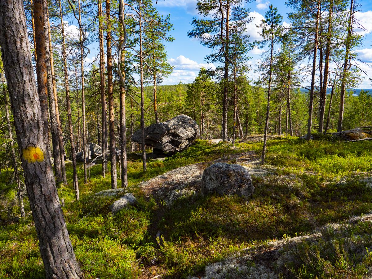 Venehjärvi место, где хочется умереть или вновь родиться 014