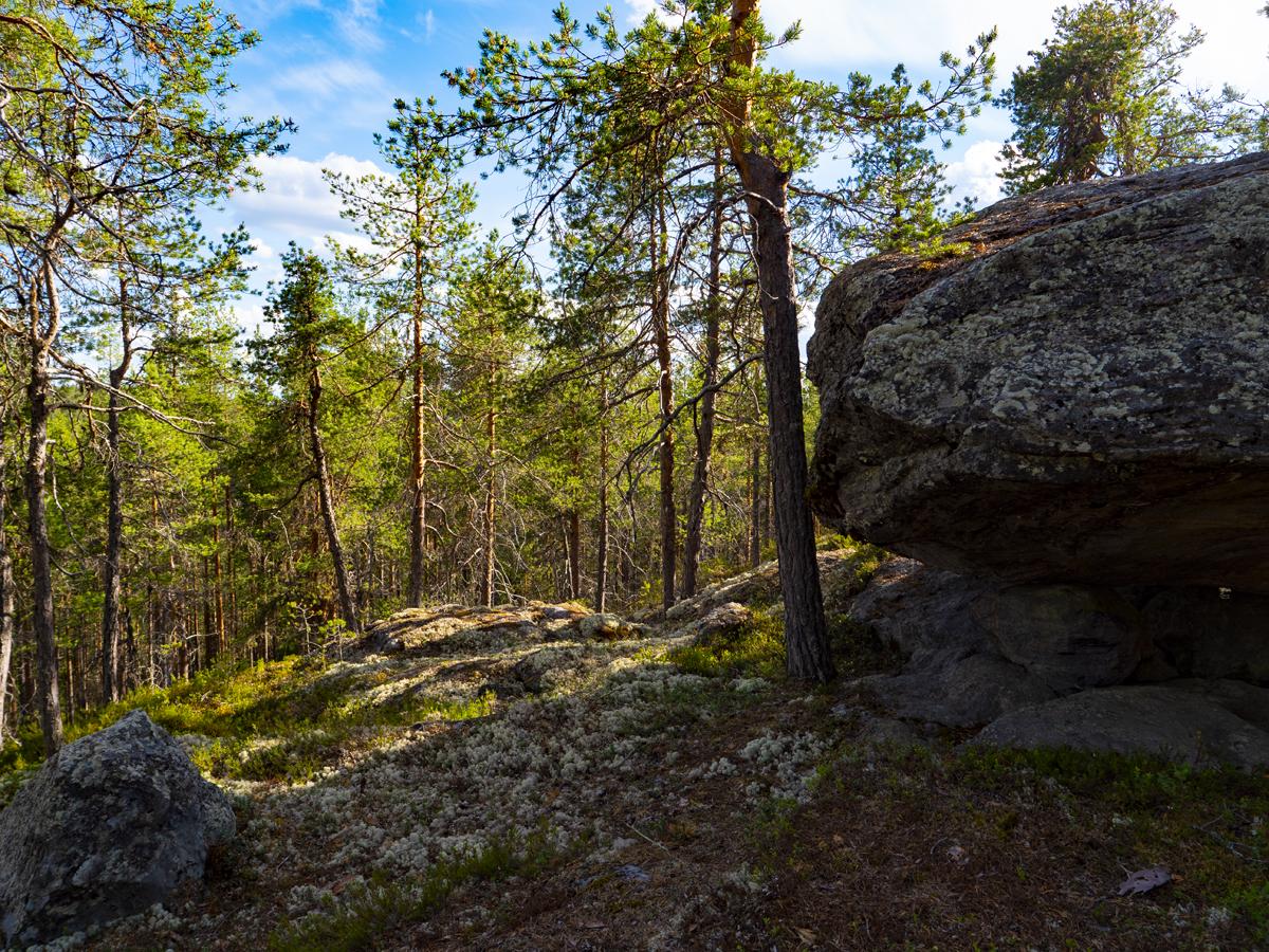 Venehjärvi место, где хочется умереть или вновь родиться 015
