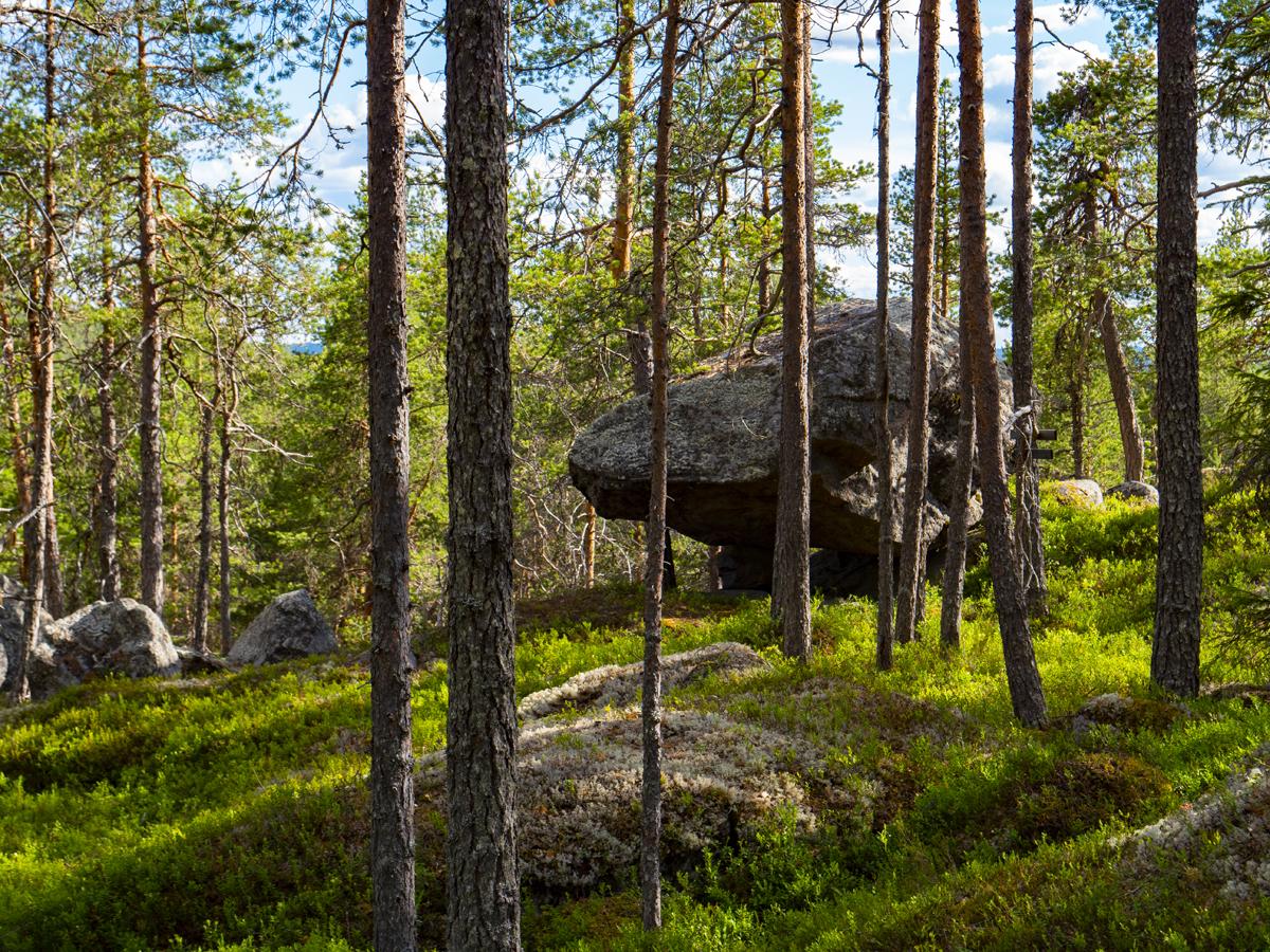 Venehjärvi место, где хочется умереть или вновь родиться 016