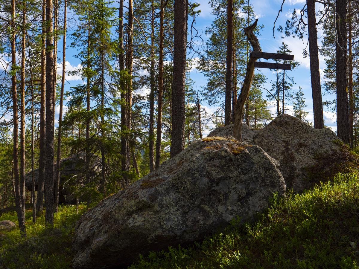 Venehjärvi место, где хочется умереть или вновь родиться 017