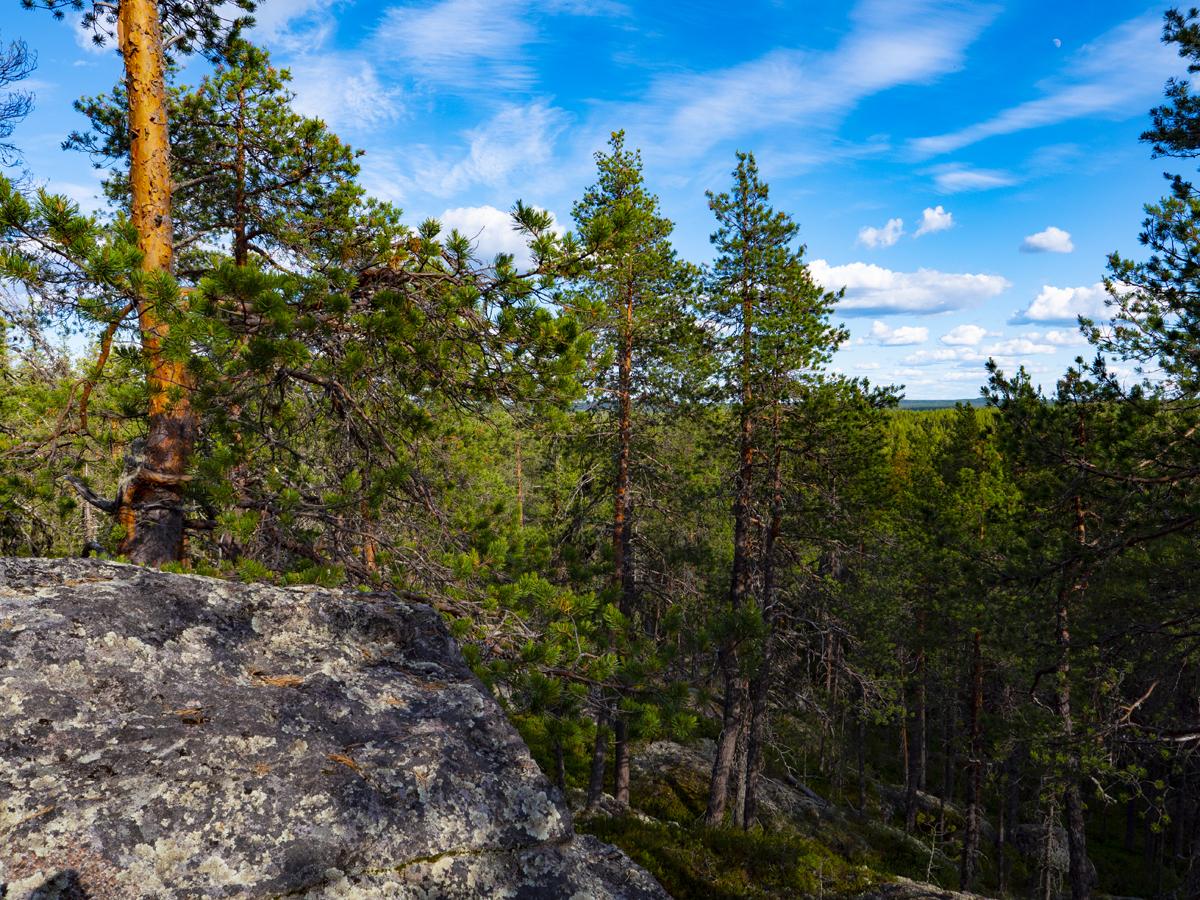 Venehjärvi место, где хочется умереть или вновь родиться 020