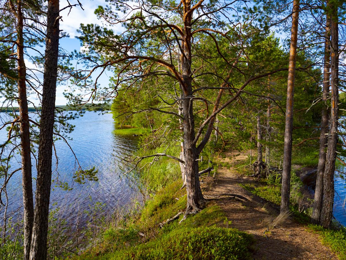Venehjärvi место, где хочется умереть или вновь родиться 032