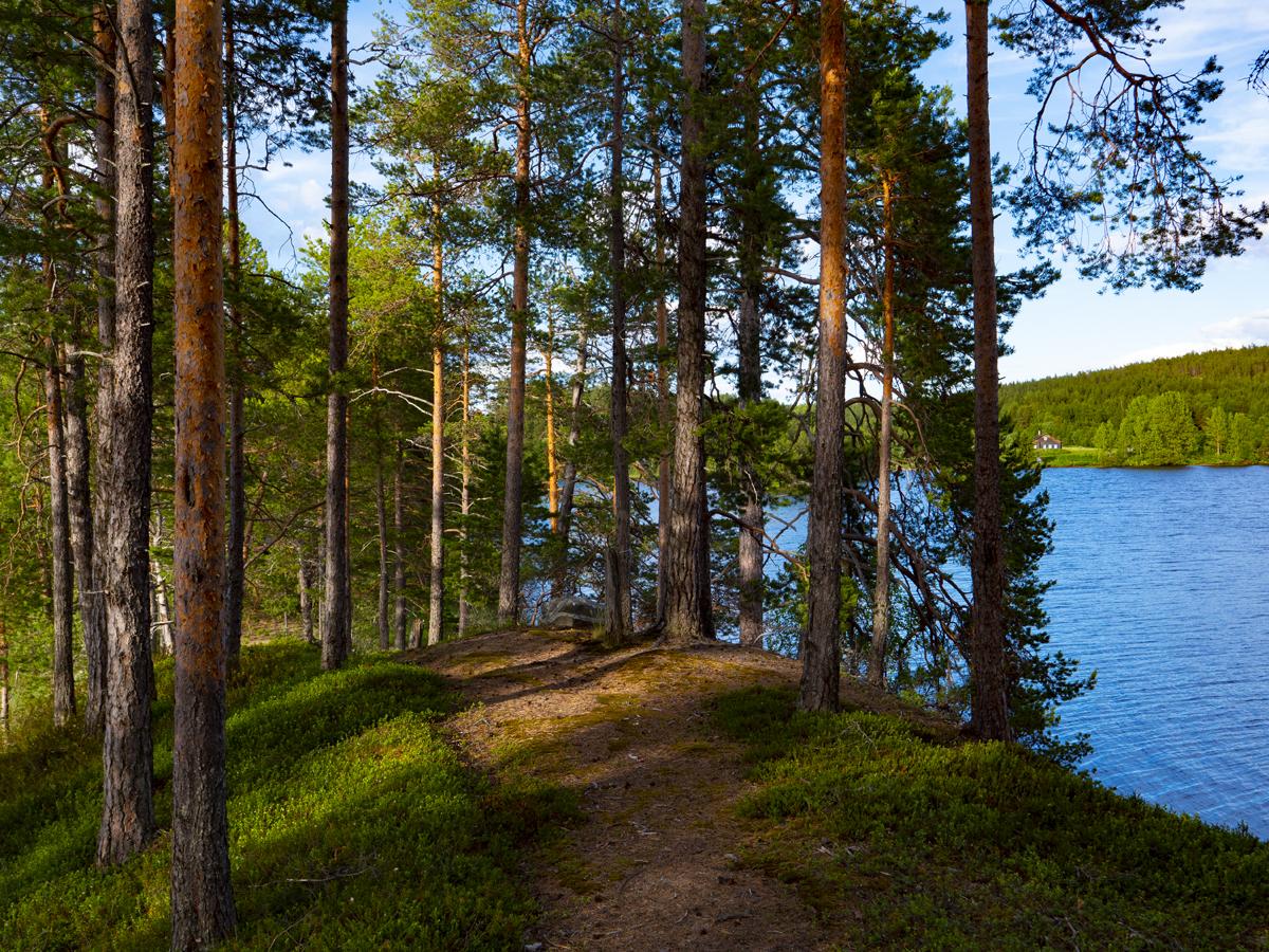 Venehjärvi место, где хочется умереть или вновь родиться 034