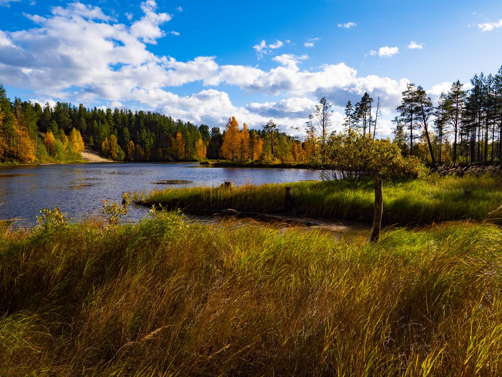 Осень в Северной Карелии 013