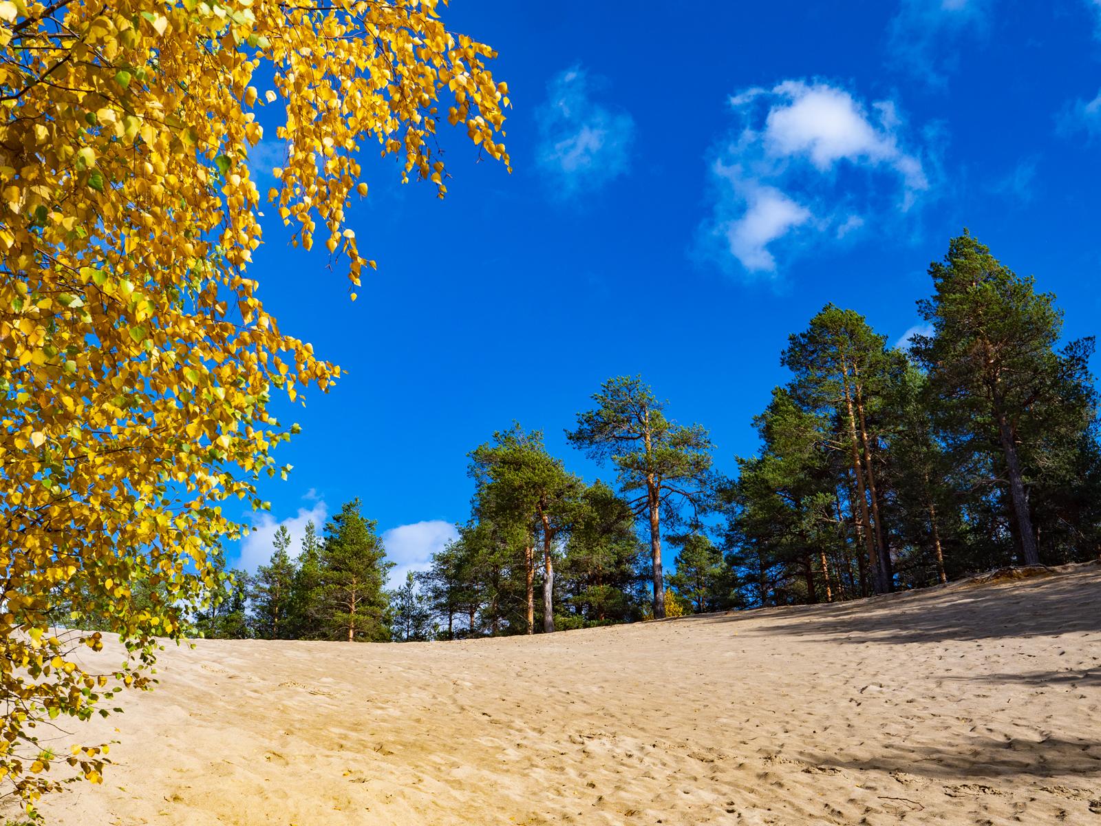 Осень в Северной Карелии 015