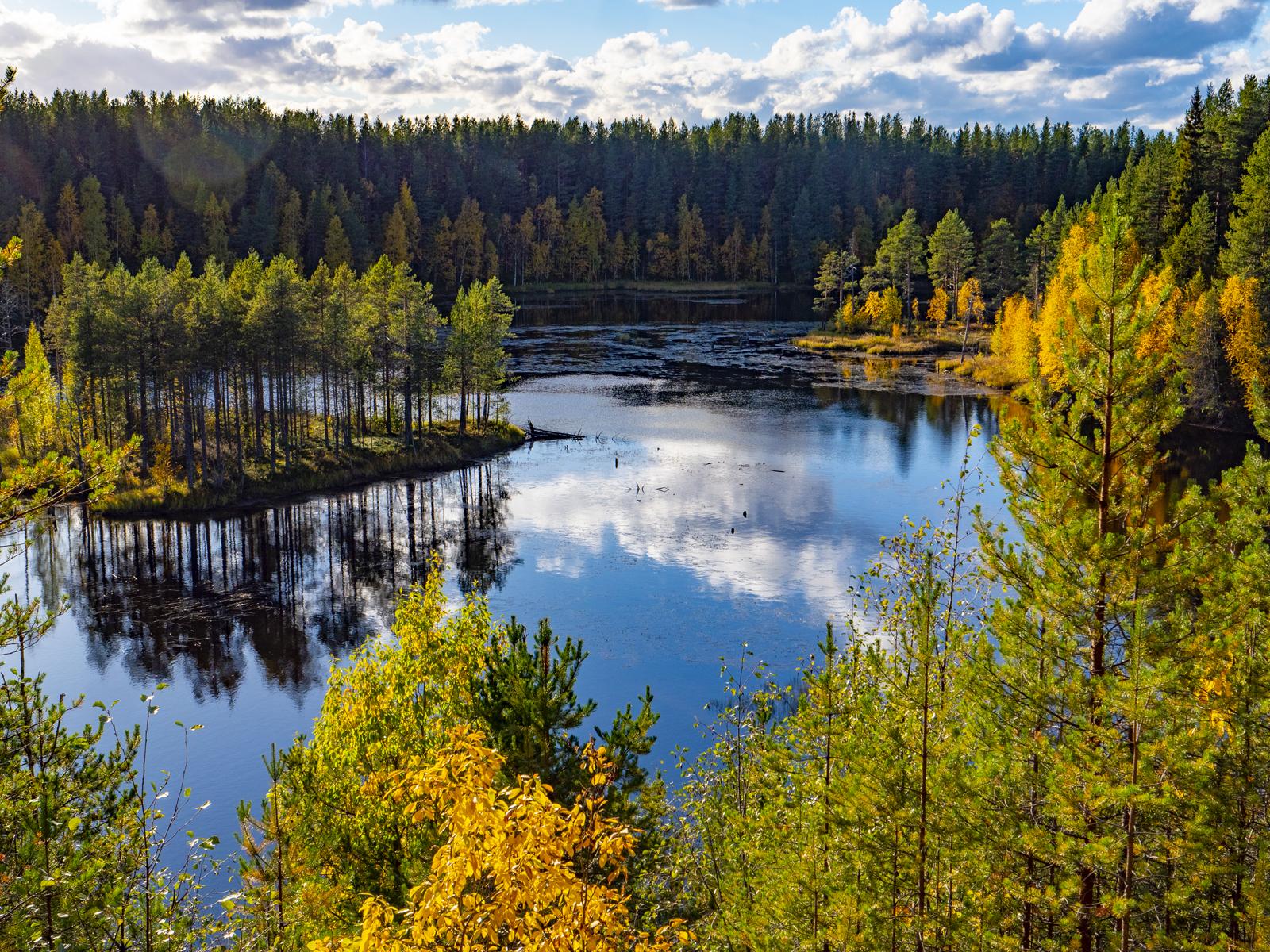 Осень в Северной Карелии 021