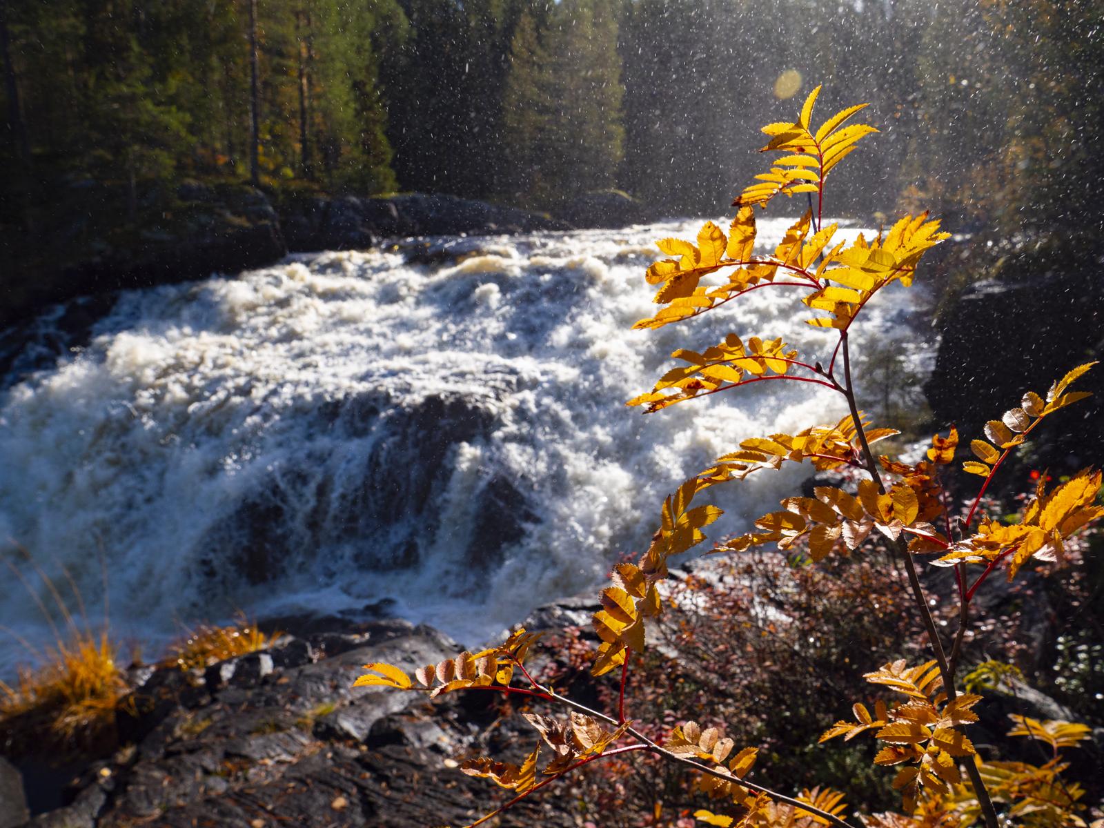 Осень в Северной Карелии 09